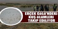 Erçek Gölü'ndeki kuş ölümleri takip...