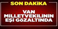 Van Milletvekilinin Eşi Gözaltına Alındı!