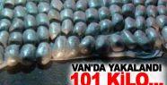 Van'da 101 kilo 350 gram eroin ele geçirildi