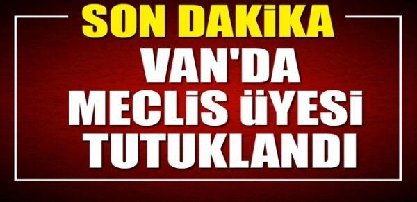 Van'da meclis üyesi tutuklandı